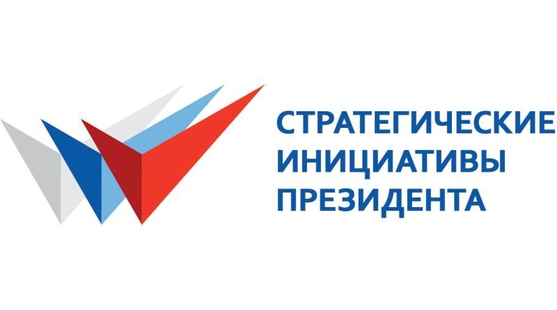 Реализация стратегических инициатив Президента Российской Федерации